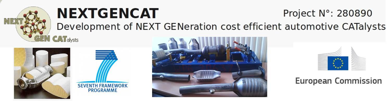 47-Next Gen Cat
